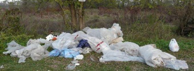 Abbandono illecito di rifiuti sul territorio comunale